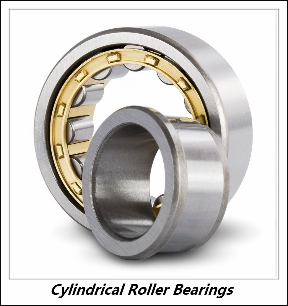 1.772 Inch | 45 Millimeter x 3.937 Inch | 100 Millimeter x 0.984 Inch | 25 Millimeter  CONSOLIDATED BEARING NU-309E M W/23  Cylindrical Roller Bearings