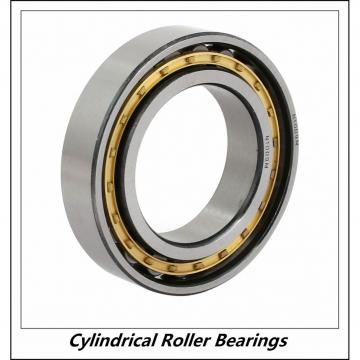 1.969 Inch | 50 Millimeter x 3.543 Inch | 90 Millimeter x 0.787 Inch | 20 Millimeter  CONSOLIDATED BEARING NJ-210 M C/3  Cylindrical Roller Bearings