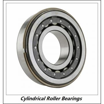11.024 Inch | 280 Millimeter x 19.685 Inch | 500 Millimeter x 3.15 Inch | 80 Millimeter  CONSOLIDATED BEARING NU-256E M  Cylindrical Roller Bearings