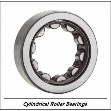 0.984 Inch | 25 Millimeter x 2.441 Inch | 62 Millimeter x 0.669 Inch | 17 Millimeter  CONSOLIDATED BEARING NU-305  Cylindrical Roller Bearings