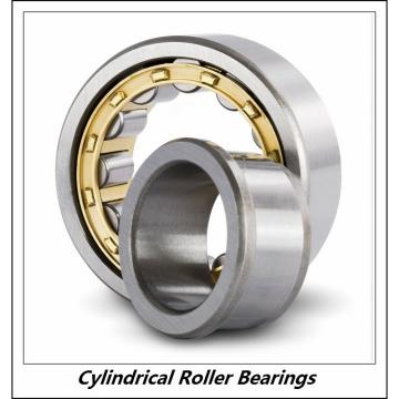1.181 Inch | 30 Millimeter x 2.835 Inch | 72 Millimeter x 0.748 Inch | 19 Millimeter  CONSOLIDATED BEARING NU-306 M W/23  Cylindrical Roller Bearings