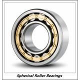 3.74 Inch | 95 Millimeter x 6.693 Inch | 170 Millimeter x 1.693 Inch | 43 Millimeter  GENERAL BEARING 22219CAKC3W33  Spherical Roller Bearings